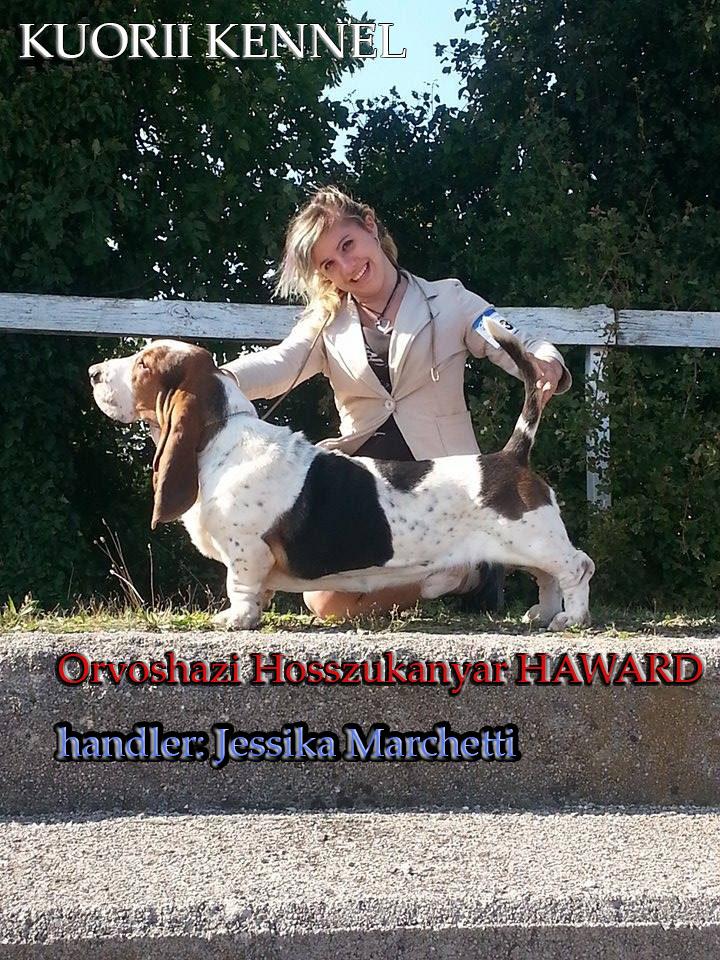 Haward & Jessika