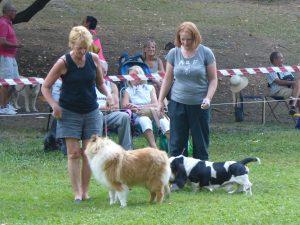 Expo canina Parco Costabissara (VI)-amiche-di-avventura